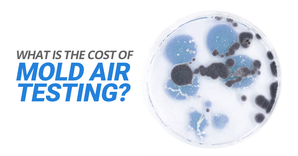 What Is The Cost Of Mold Air Testing