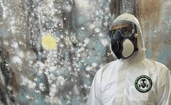 mold-remediation-restoration