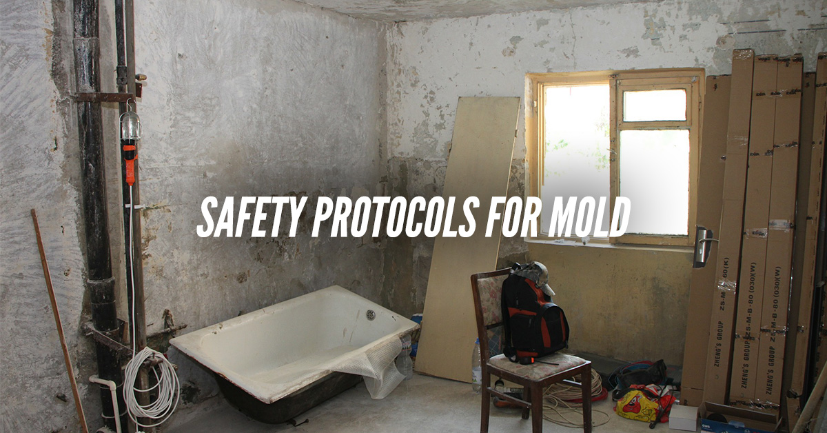 Safety Protocols For Mold