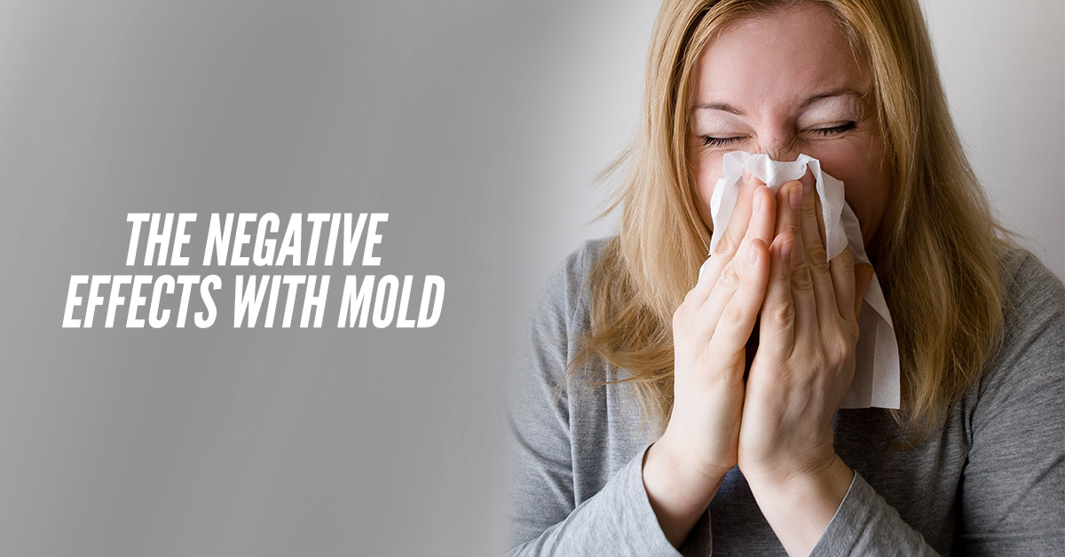 The Negative Effects With Mold