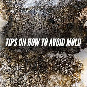 Tips On How To Avoid Basement Mold