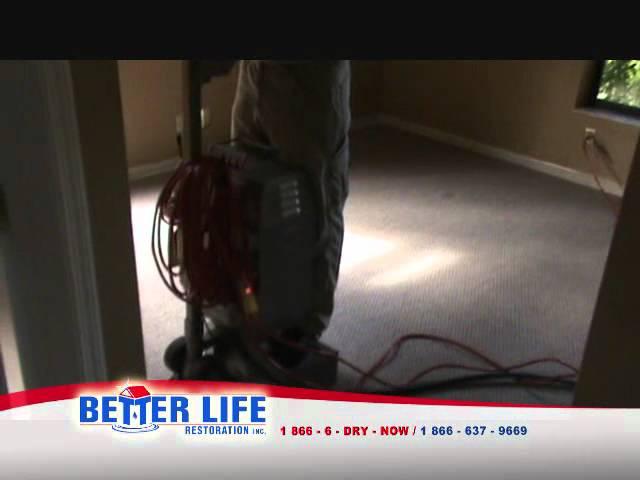 Better Life Restoration  Flood My Home Fort Lauderdale FL