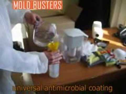 Full Mold Remediation Is Possible!