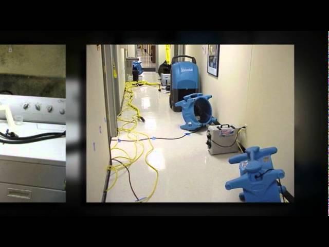 Mold Remediation Business Atlanta