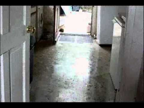 Flooded House New Port Richey