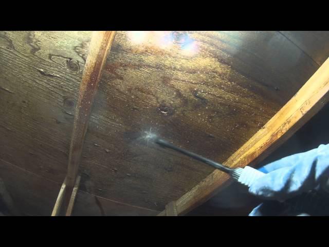 Mold Remediation. RMR 86