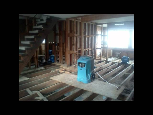 Mold Remediation NJ / Thorough & Affordable Mold Remediation NJ / Mold In Your Home?