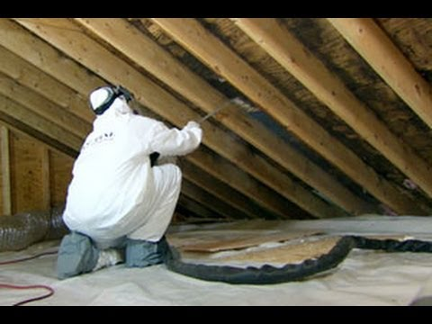 How To Clean Up Attic Mold – This Old House