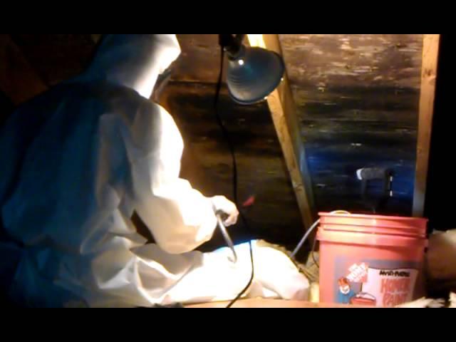 Attic Mold Remediation Using 'MMR'.
