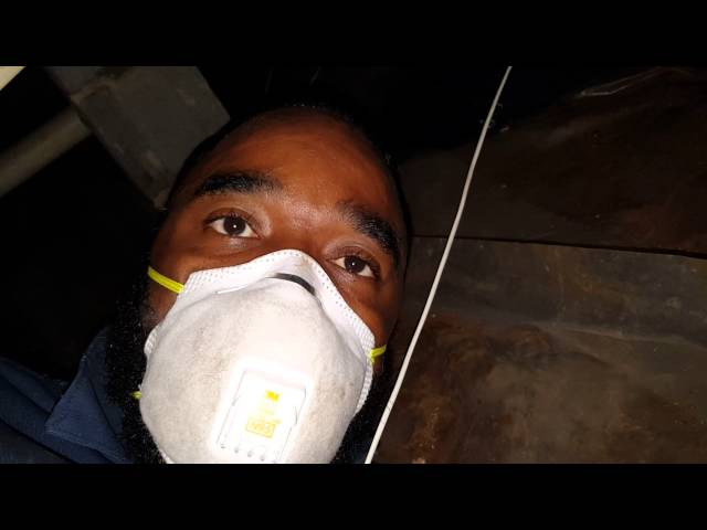 Do It Yourself Mold Remediation