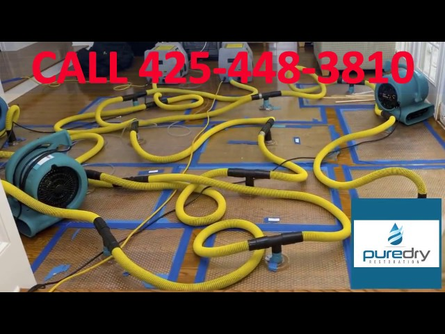 Flood Damage Cleanup Woodinville | 24 Hour Water Damage Restoration Services Woodinville, Wa