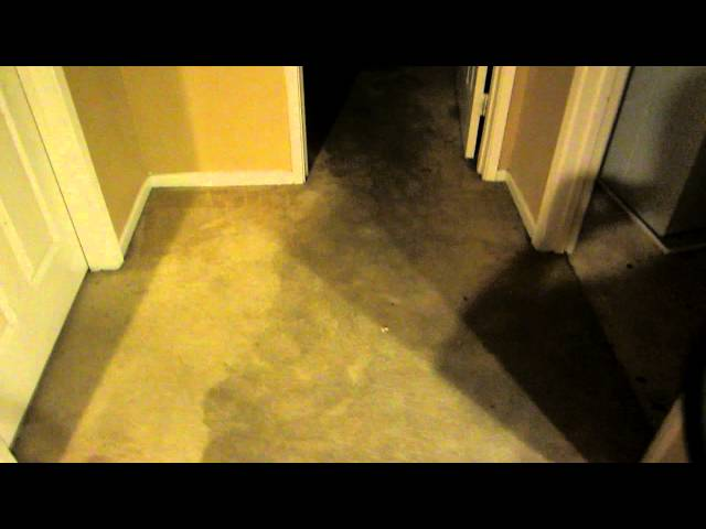 Flood Damage Repair San Diego  619 699 0130  Part 1 Of 2