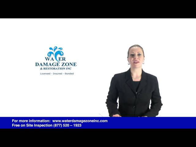 Mold Remediation Process – Water Damage Zone Los Angeles 877 520 1923