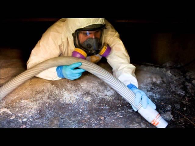 911 Restoration Orlando – Water & Fire Damage Restoration, Mold Removal