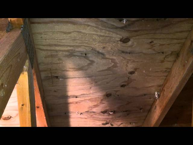 Attic Mold Remediation  Mold Stain Removal Des Plaines, IL