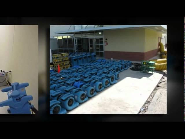 Mold Remediation Contractors Atlanta
