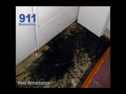 Mold Removal, Water Damage Restoration, Fire Water Damage Restoration