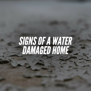 Do You Know The Signs Of A Water Damaged Home?