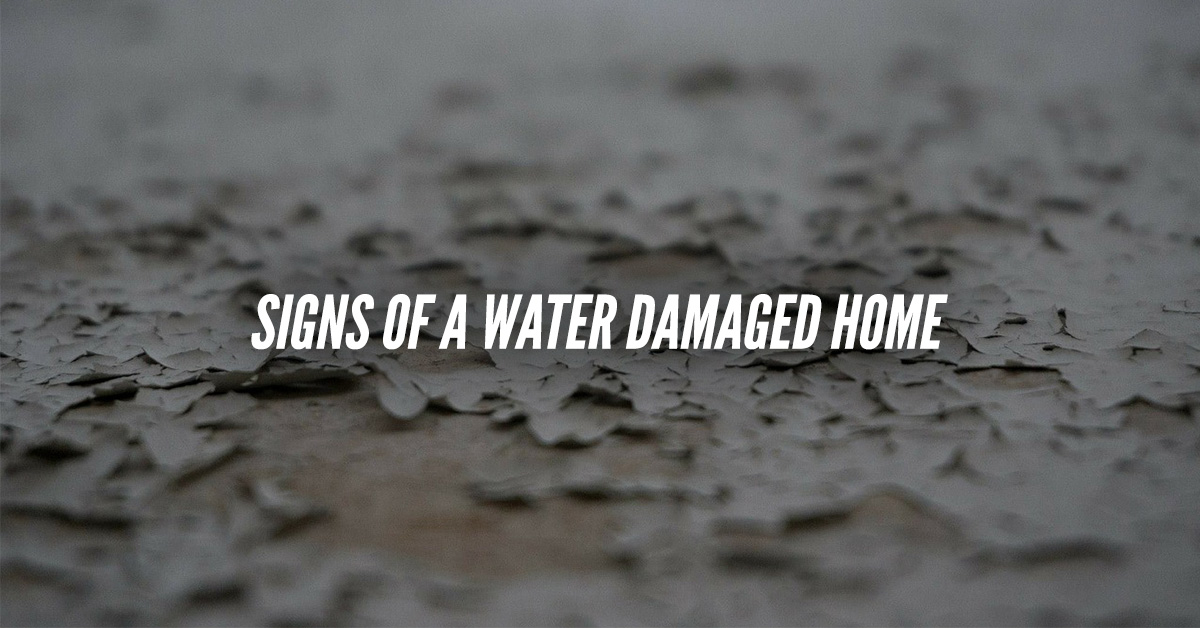 Key Signs Of A Water Damaged Home