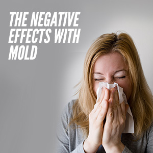 The Many Negative Effects Of Mold