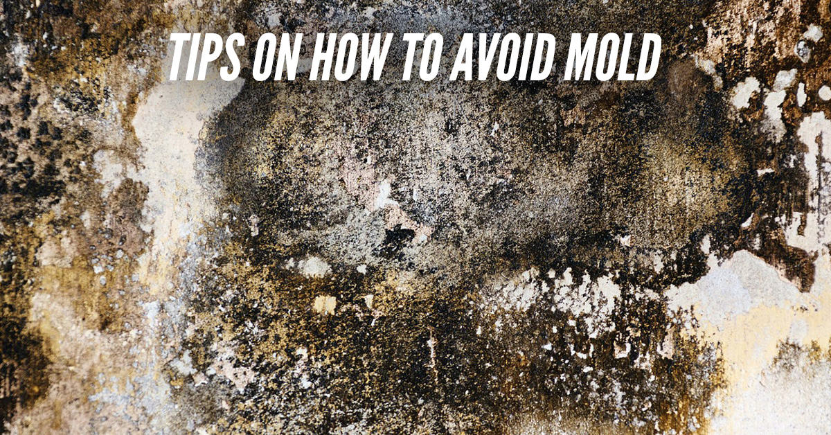Tips On How To Avoid Mold