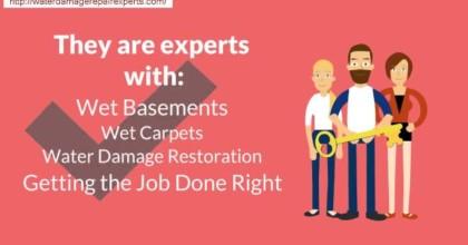 Chicago  Wet Bsement Damage Repair (312) 646-4460