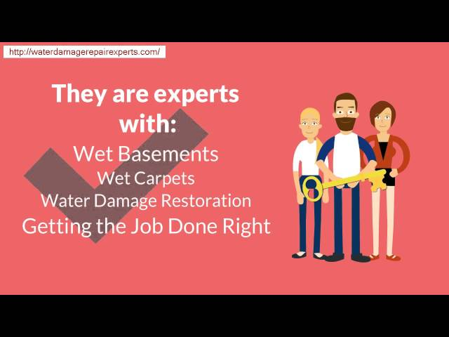 Chicago  Wet Bsement Damage Repair (312) 646 4460