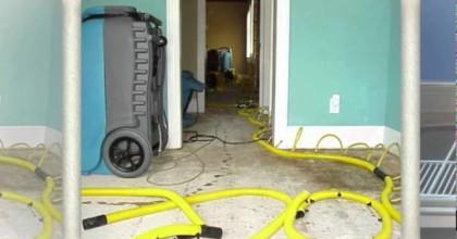 Mold Remediation Costs Atlanta