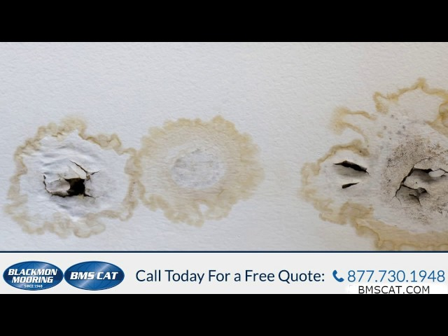 Water Damage Removal Company Cleveland OH 877 730 1948 Water Damage Restoration Cleveland