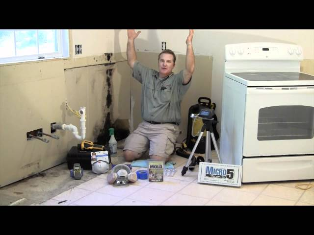 Inspection Plus – Mold Remediation Part 1