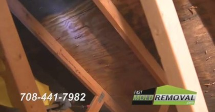 MMR Mold Stain Remover For Attic Mold Remediation.