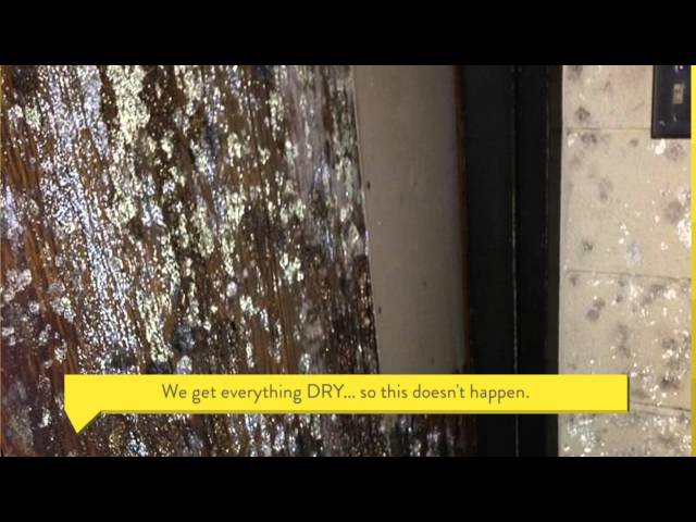 Water Damage Cleaning And Restoration – Sioux Falls, Rapid City, South Dakota