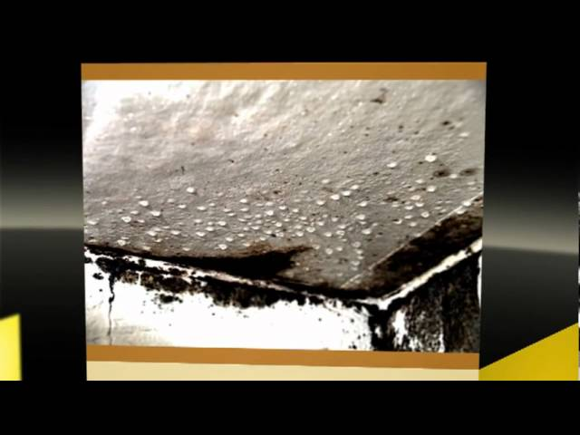 Atlanta Mold Remediation Atlanta