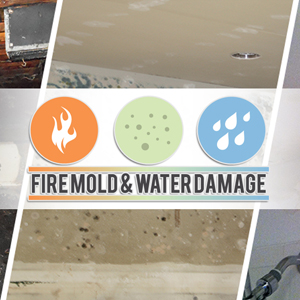 Mold Remediation Service, Water Damage Restoration Service, Fire Damage Restoration Service