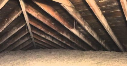 Before/After Attic Mold Removal Frankfort, IL (Attic Mold Remediation)