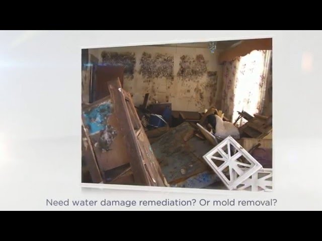 Water Damage Restoration Detroit | Oakland & Macomb County MI – Call (248) 289 8874