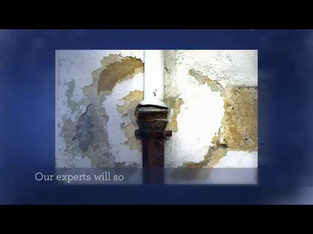 Water Damage Restoration Oakland & Macomb County MI – Call (248) 289 8874