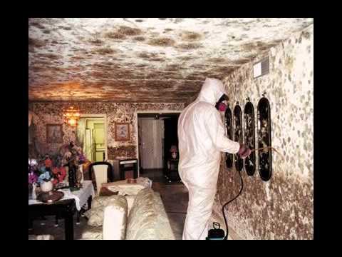 Fire Damage Restoration Cuney Tx Floor Tile Cleaning Service