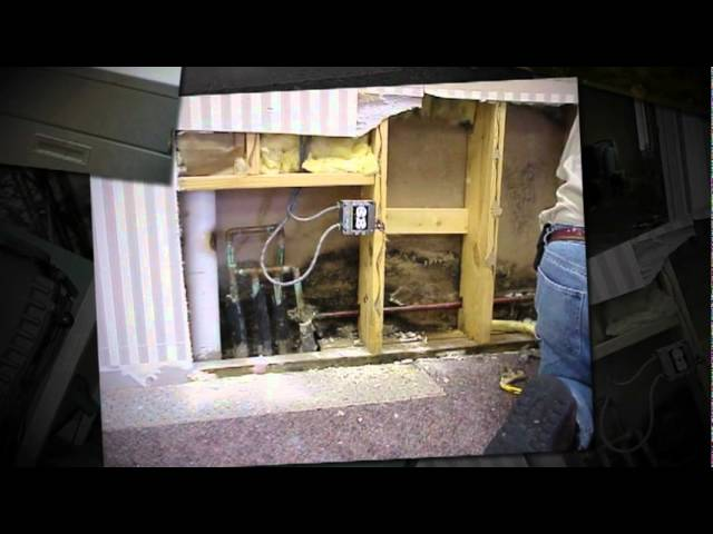 Mold Remediation Contractor Atlanta