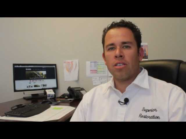 San Diego Mold Removal And Mold Remediation (760) 434 4555