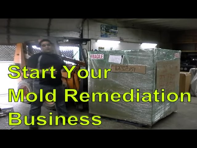 Mold Remediation Business In A Box: Start Your Business