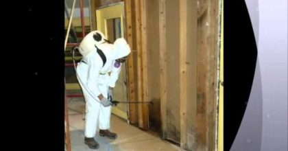 San Diego Mold Remediation 90111 CA